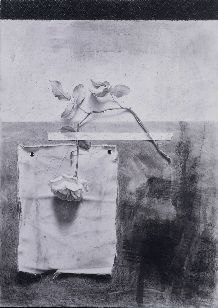 Manuel Quintana Martelo dibujo